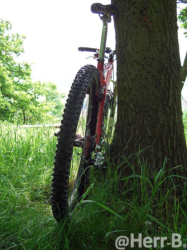 Bike mit fetten, neuen Reifen