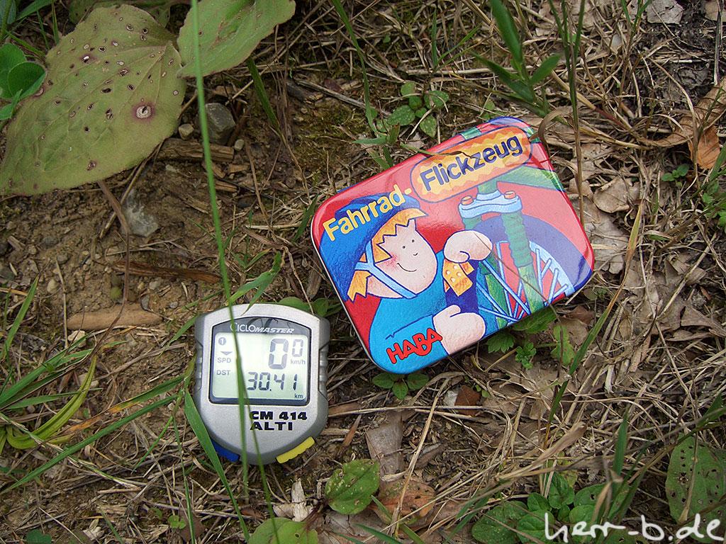 Kilometerstandbeweis für die Pannenstatistik