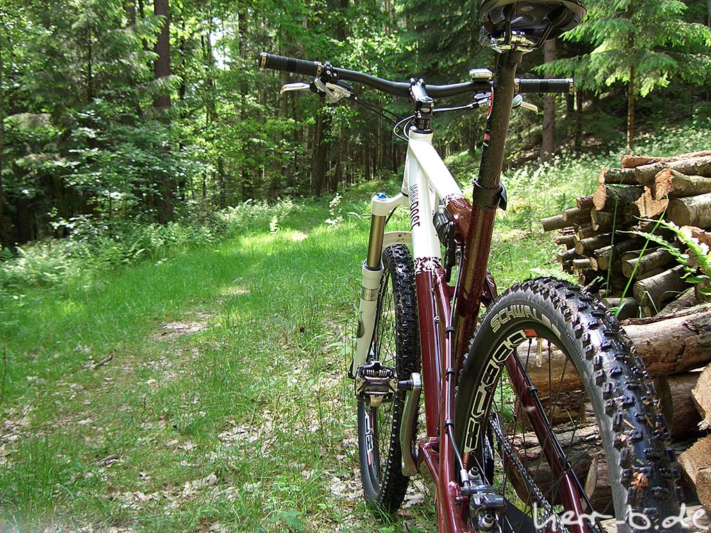 Jabba Wood im Wald