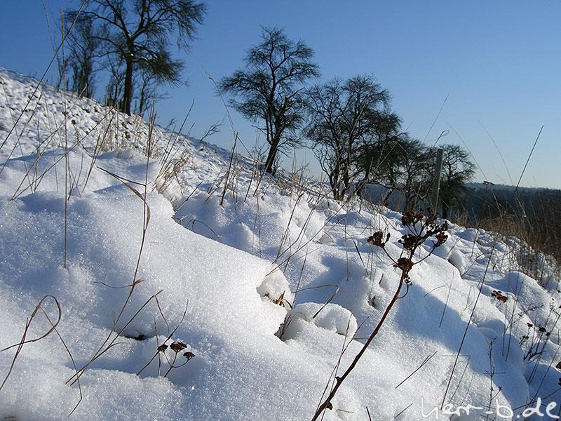 Frostschnee
