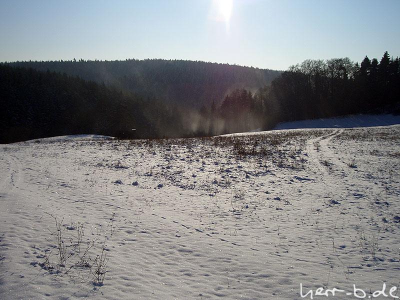 Schneewehen im Wald