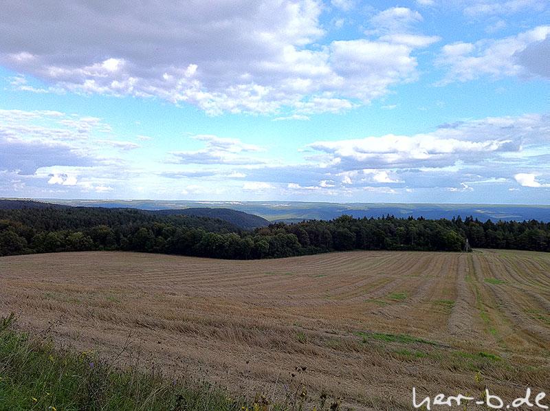 Septemberfeld mit Holzland im Hintergrund
