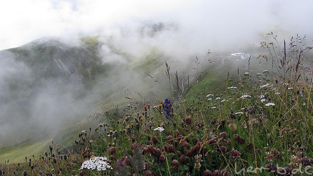 In der Schweizer Bergwelt.