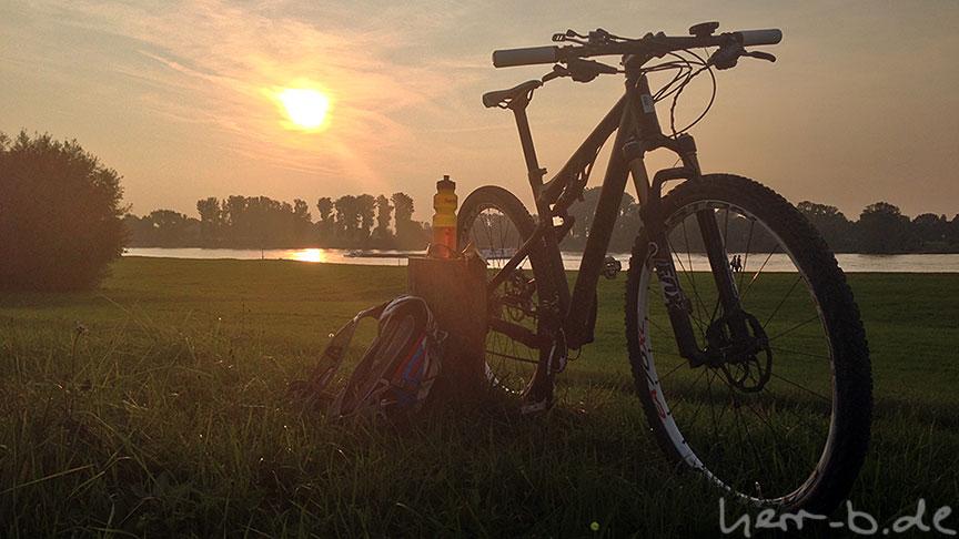 Dottore am Rhein in der Abendsonne