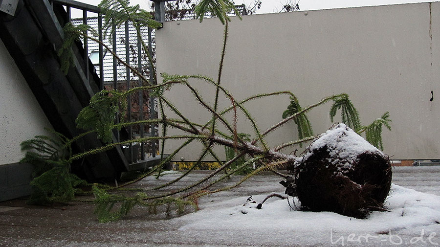 Sturmschäden, Symbolfoto