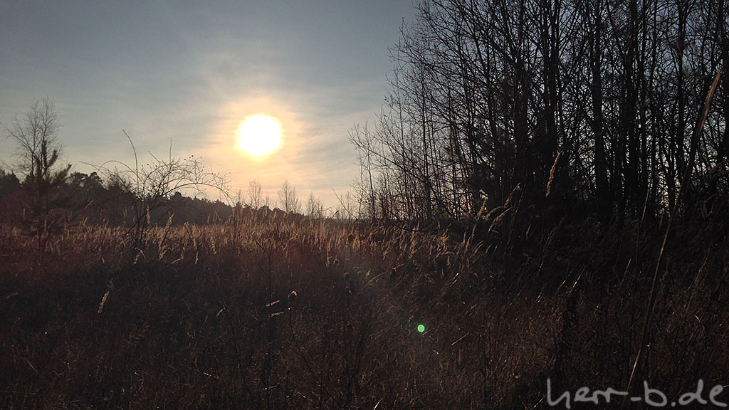 Sonne im Naturschutzgebiet