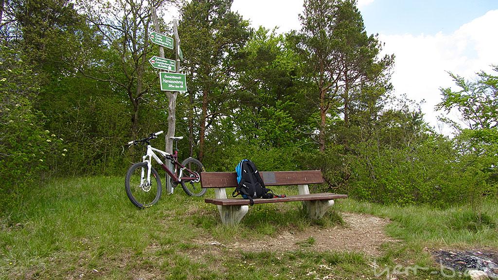 Auf dem Hornissenberg.