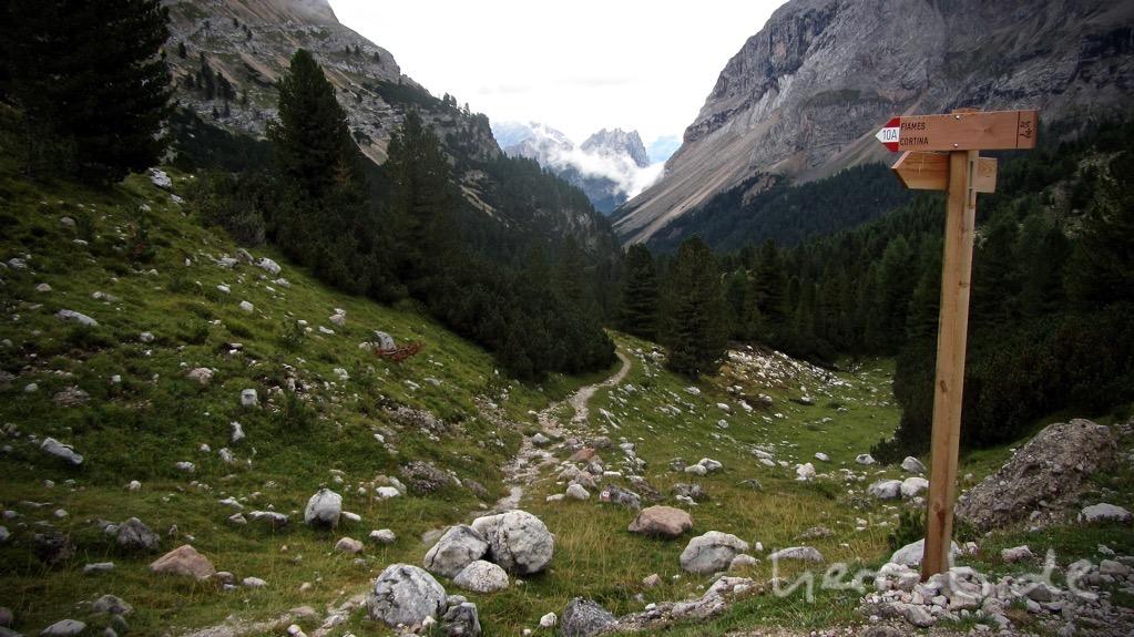 Schöner Trail, leider nicht in unsere Richtung.