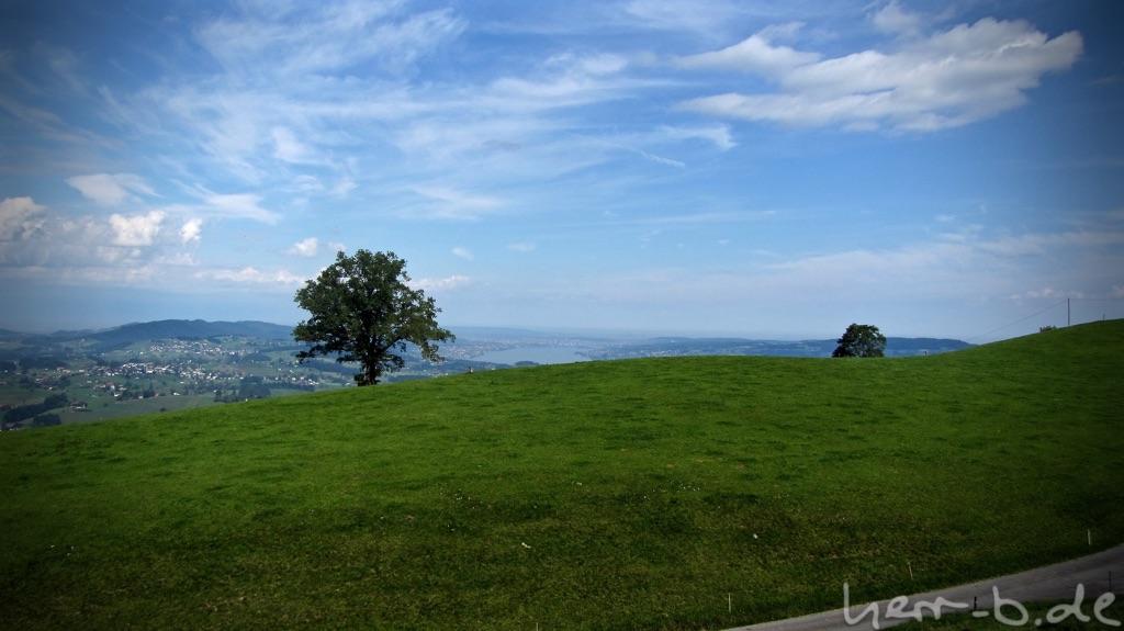 Ausblick Richtung Zürichsee