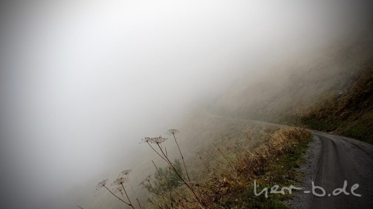 Mittendrin in der Nebelsuppe.