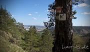 Der Blick vom Haeckel-Stein auf die Jena-Stadt.