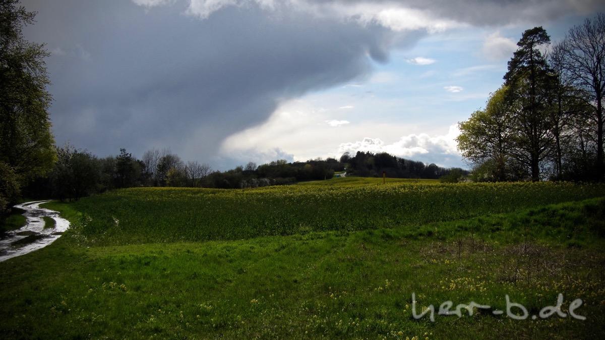 Wetter, wieder ziemlich ungemütlich, hinter dem Rapsfeld.