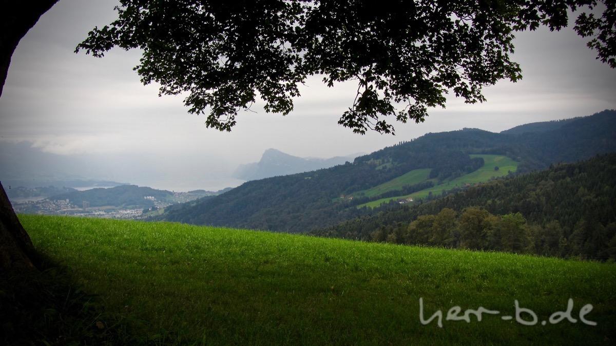 Aussicht auf den Vierwaldstätter See.