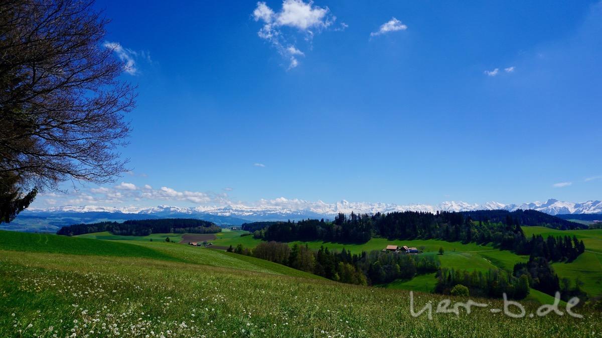 Ausblick vom Ulmizberg im Mai.