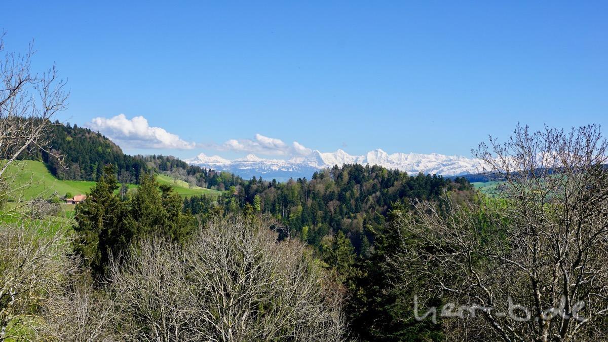 Am Horizont sind Eiger, Mönch, Jungfrau und der Rest mit frischem Schneeüberzug.