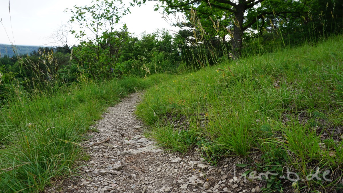 Thüringer Trail.
