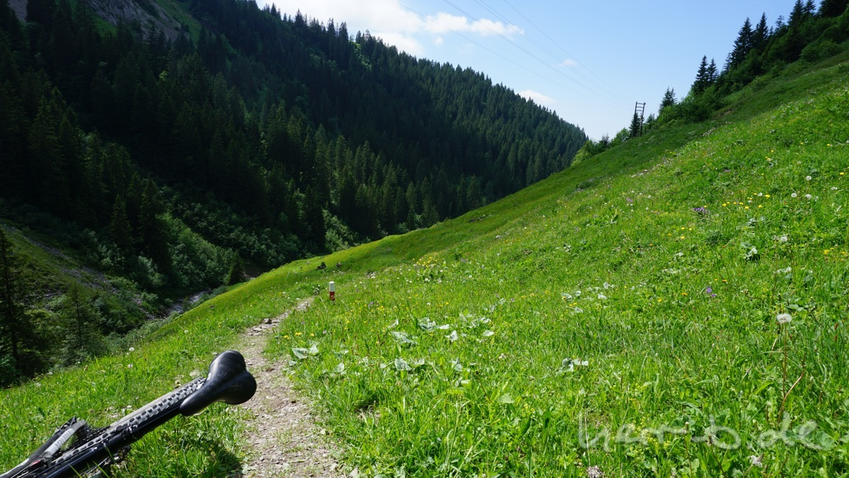 Trail im Oberen Suldtal.