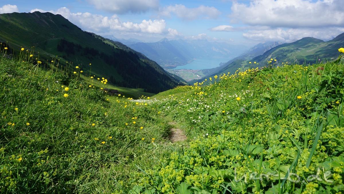 Beginn der Abfahrt nach Interlaken.