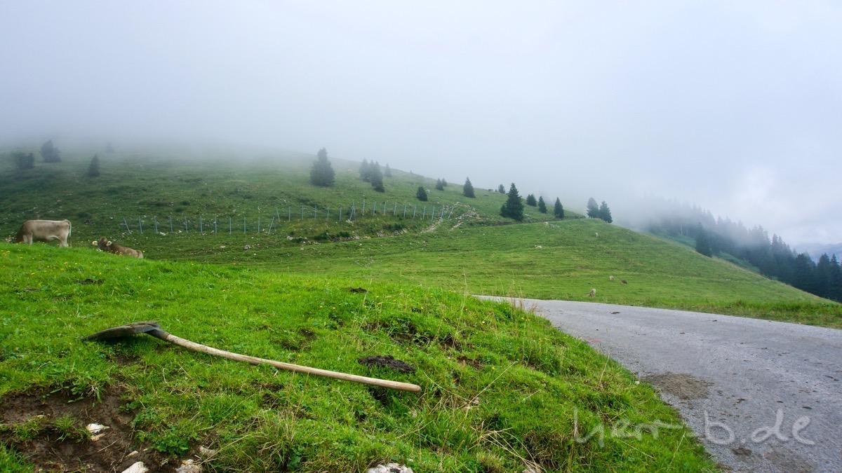 Auf dem Weg in den Nebel lag eine Schaufel am Berg herum.