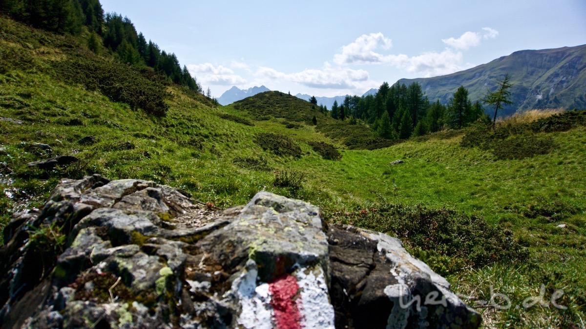 Zwischen Alp Laret und Alp Valmala.