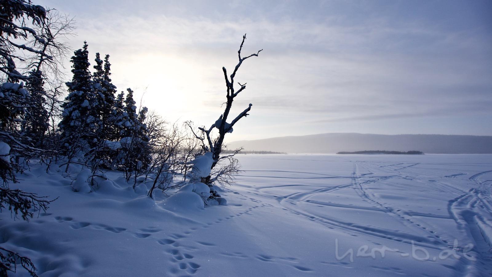 Blick auf den See Laitaure.