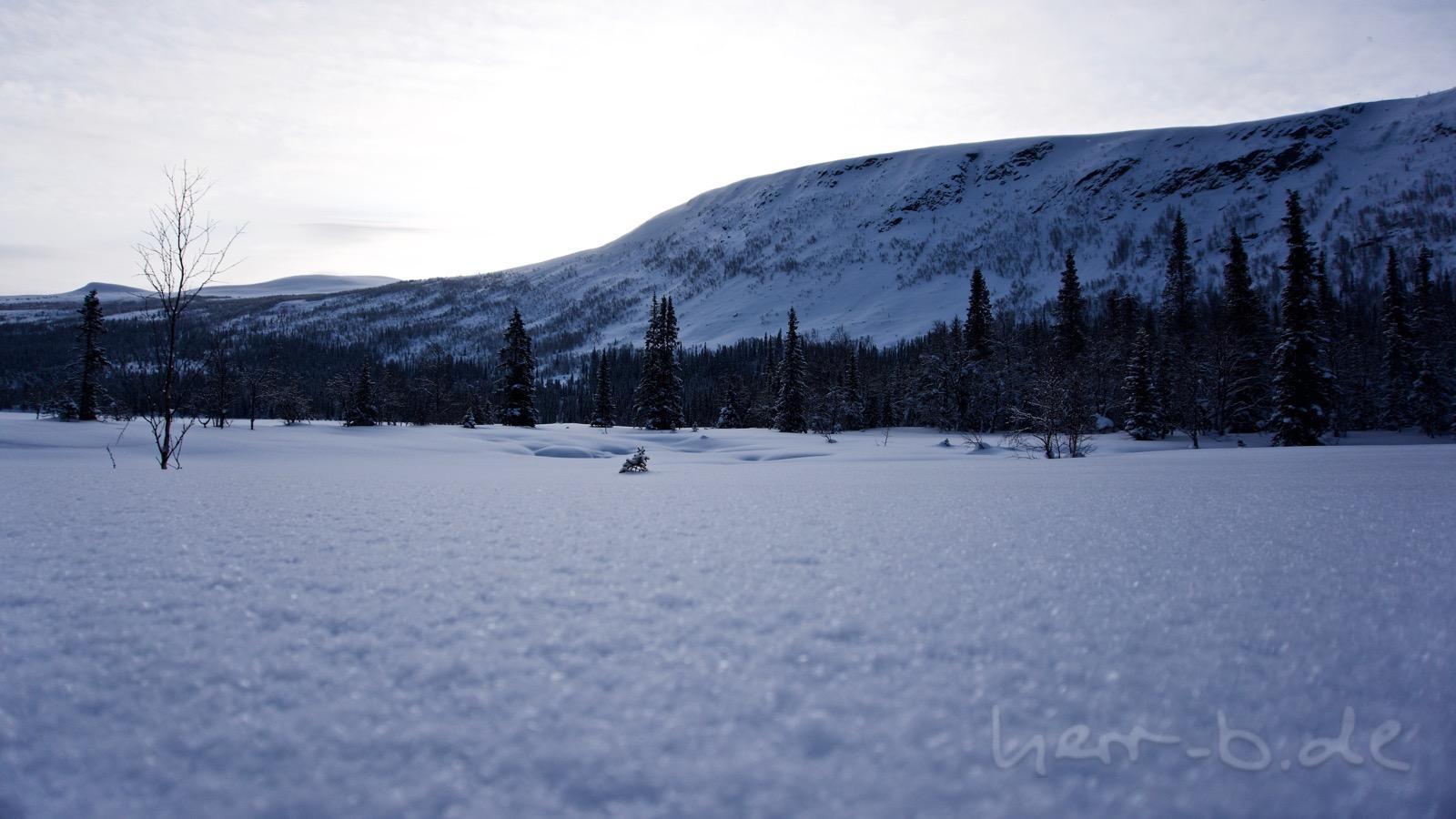 Allerfeinster lappländischer Schnee.