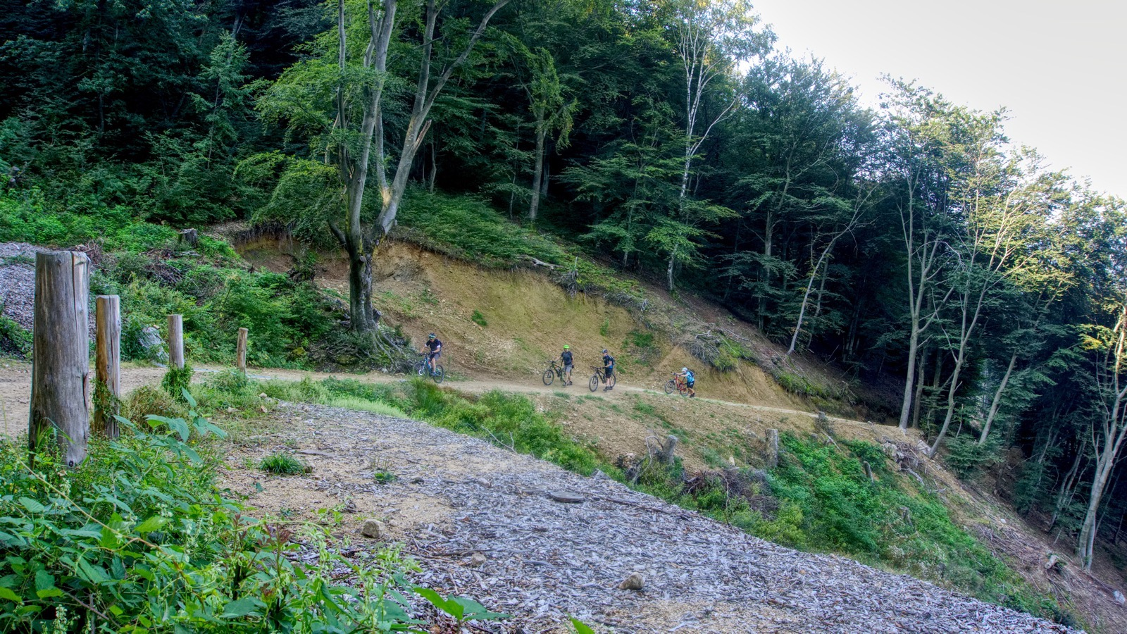 Biker kämpfen sich hinauf zur Alpe Bolla.