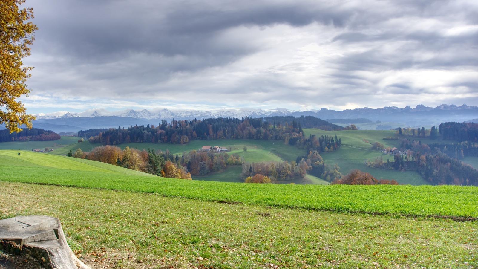 Aussicht am Ulmizberg über dem Nebel