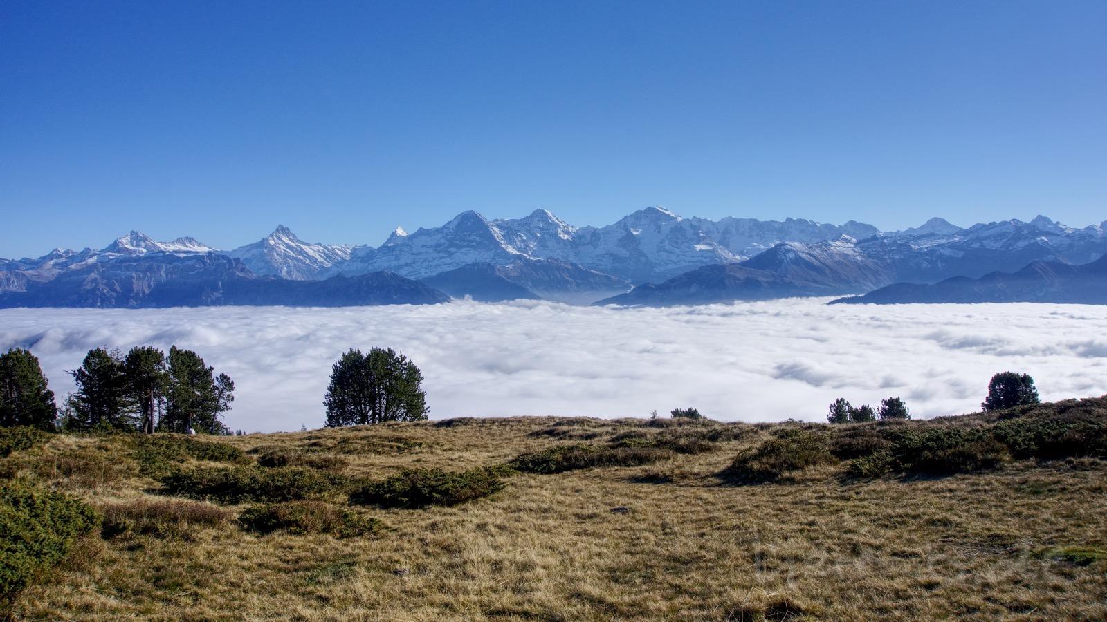 Das wunderschöne Berner Oberland-Panorama über dem Nebel.