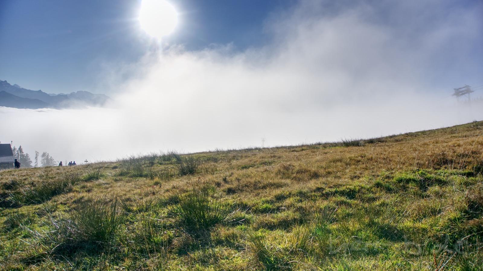 Die letzten Sonnenstrahlen kurz vor der Rückkehr in den Nebel.