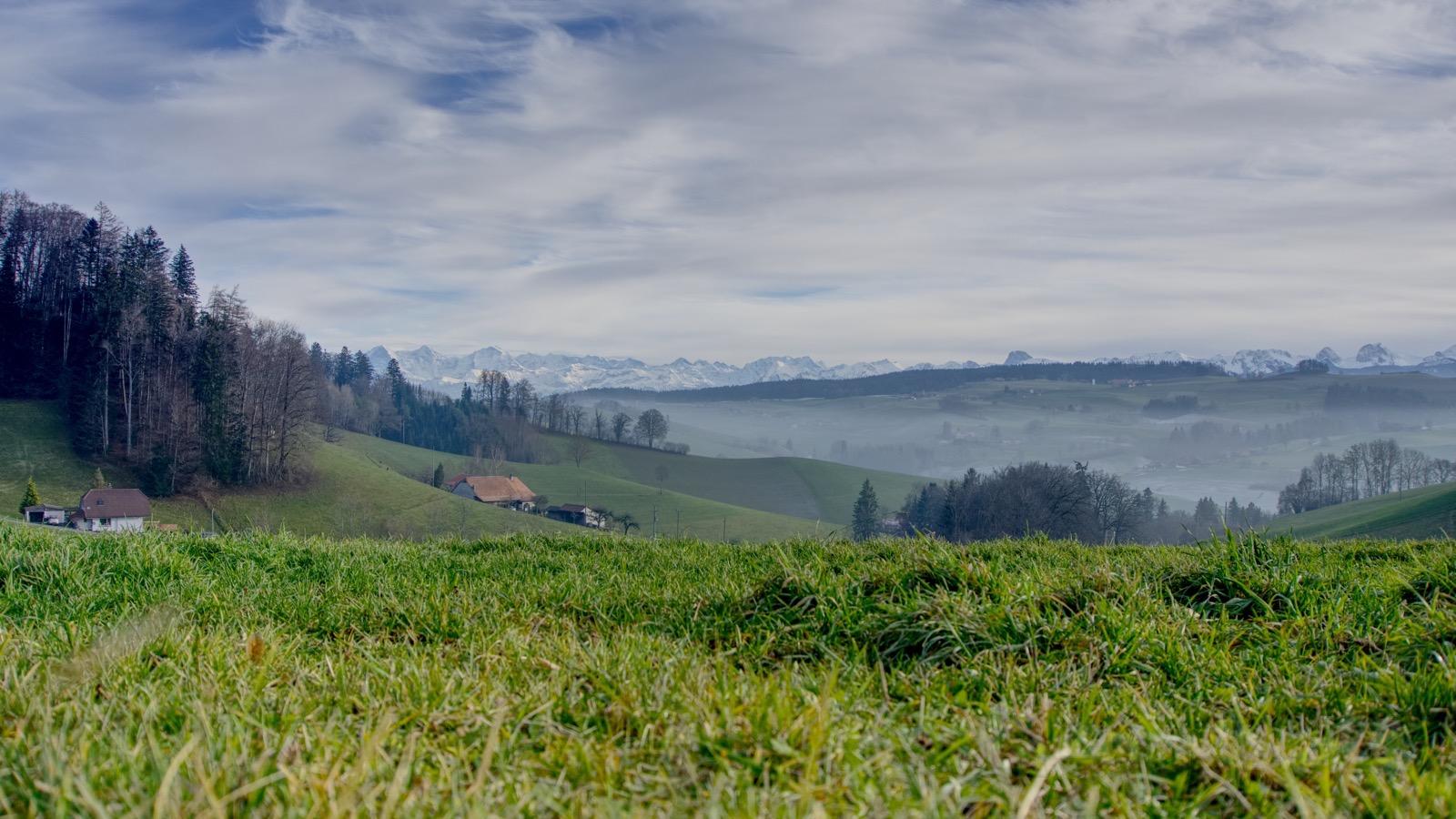 Blick auf das Oberland von Wald aus.