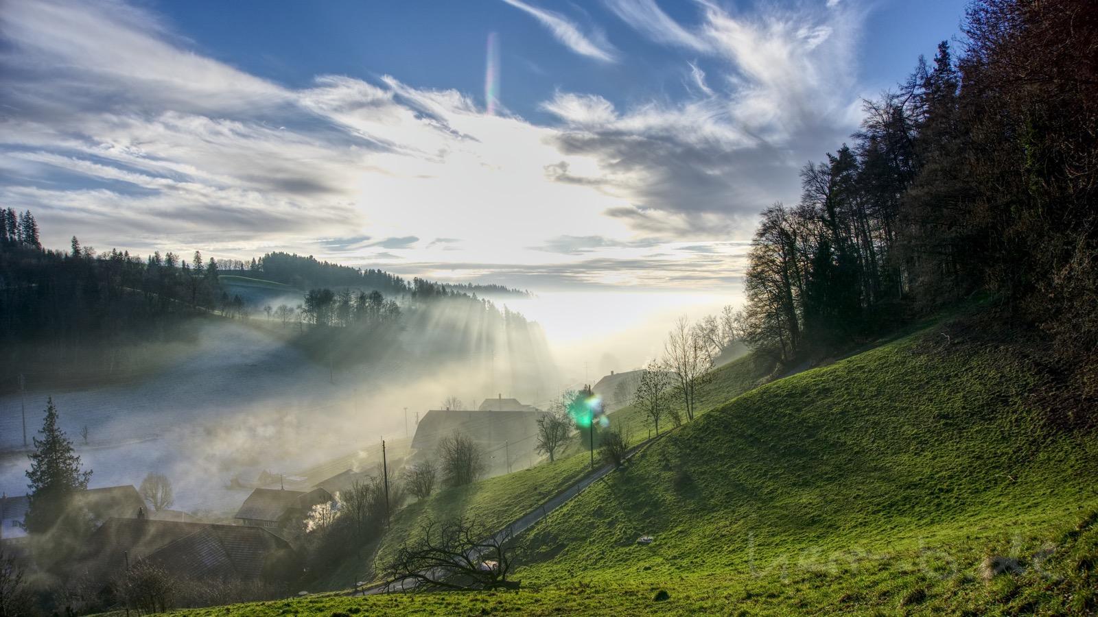 Sonne kämpft gegen den Nebel bei Oberulmiz.