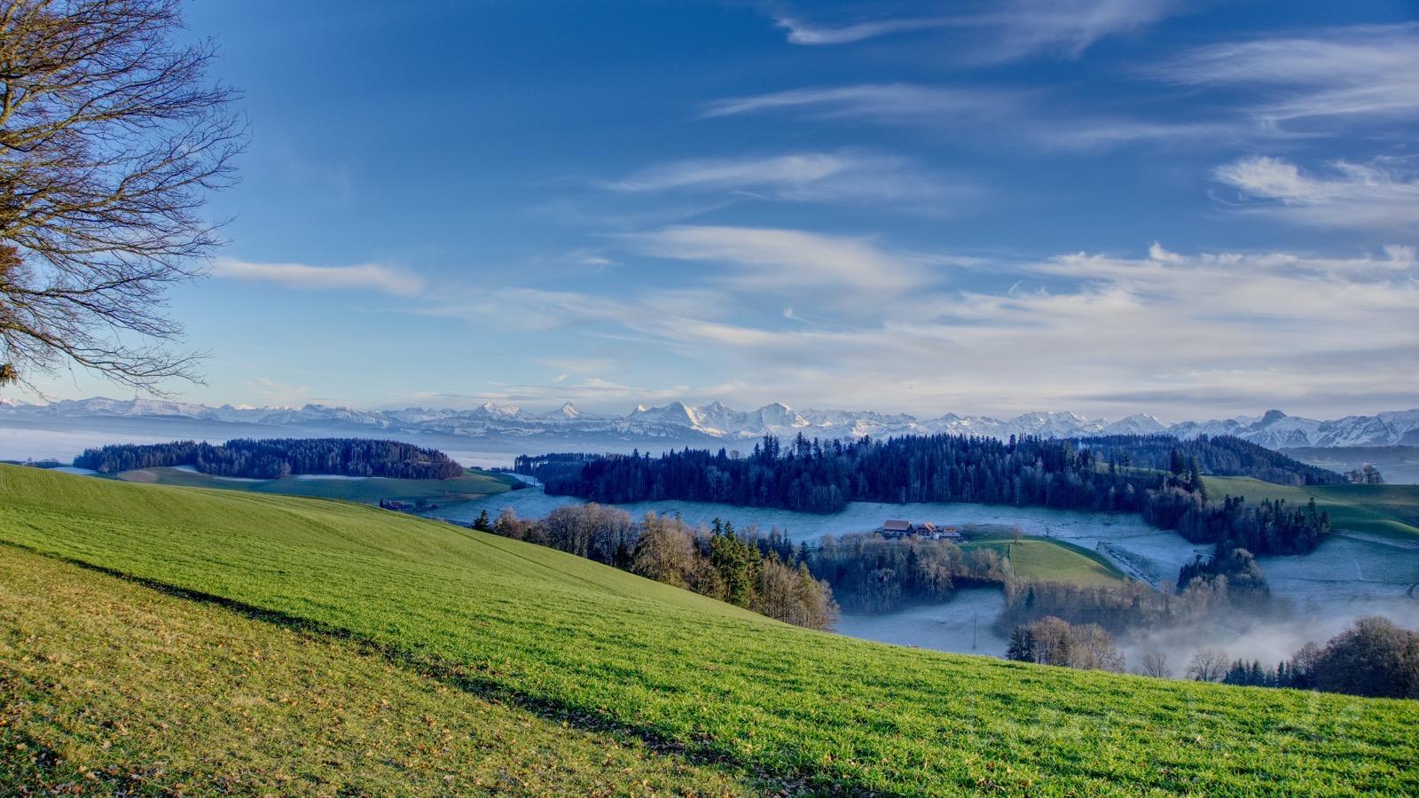 Ausblick auf den frostigen Wald und das Bergpanorama vom Ulmizberg.
