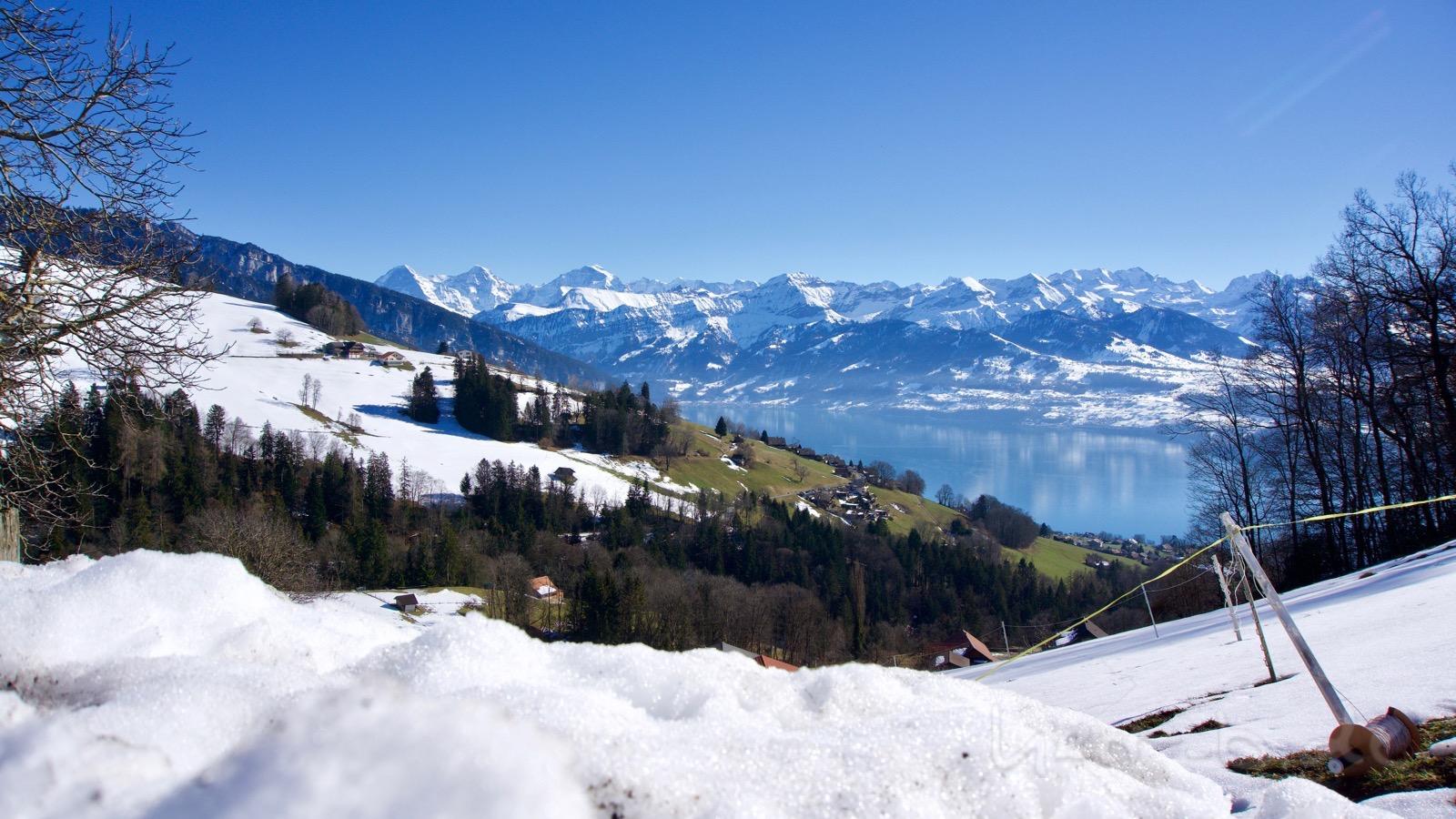 Blick auf Thunersee und Eiger, Mönch, Jungfrau.