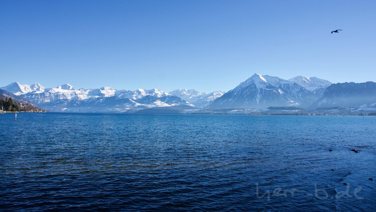 Der Thunersee mit Winter-Bergkulisse.