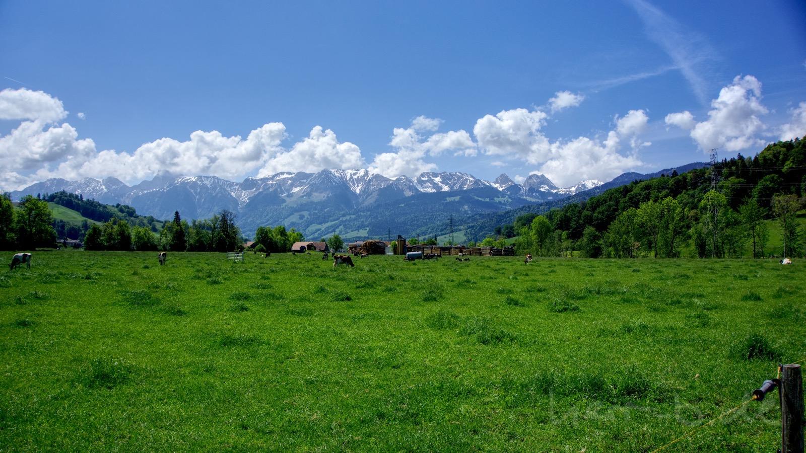 Ausblick auf die Berge 400 Meter nach dem Start.