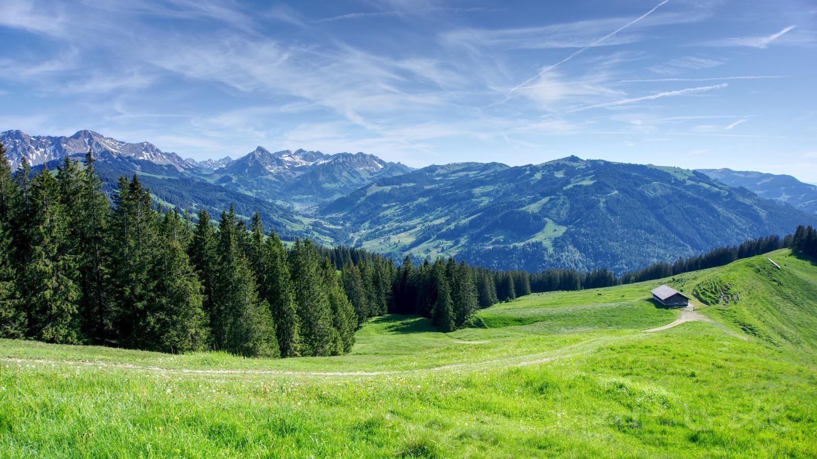Blick Richtung Schwarzsee von der Hällstett aus.