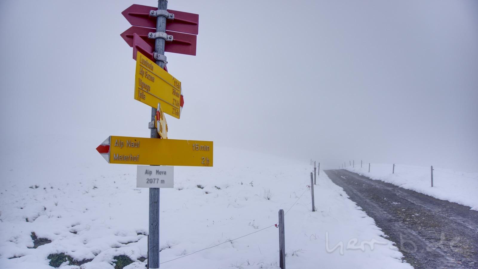 An der Alp Nova.